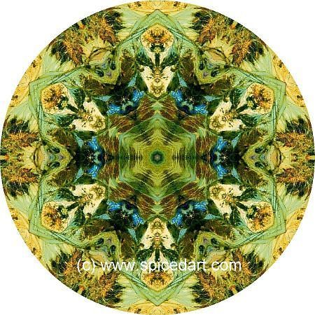 Andes Mountains Kaleidoscope Mandala Art Print